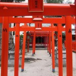 The way of Shinto is the fundation of Japanese people!