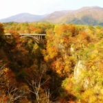 20 unique Japanese bridges that you want to see in Japan!